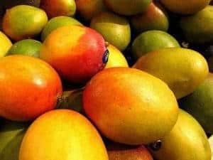 african mangoの果実