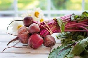 vegetable 2485059 640 300x200 1