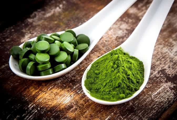 干し藻類と藻類の錠剤をスプーンですくって
