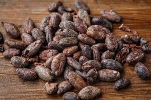 cacao bean 2522918 640 300x200 1