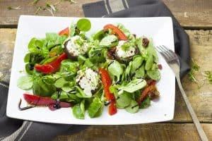 皿の上の野菜サラダ