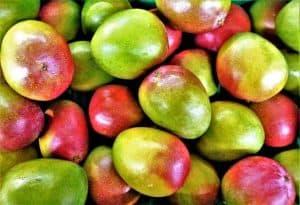 fruit 3298948 640 300x205 1
