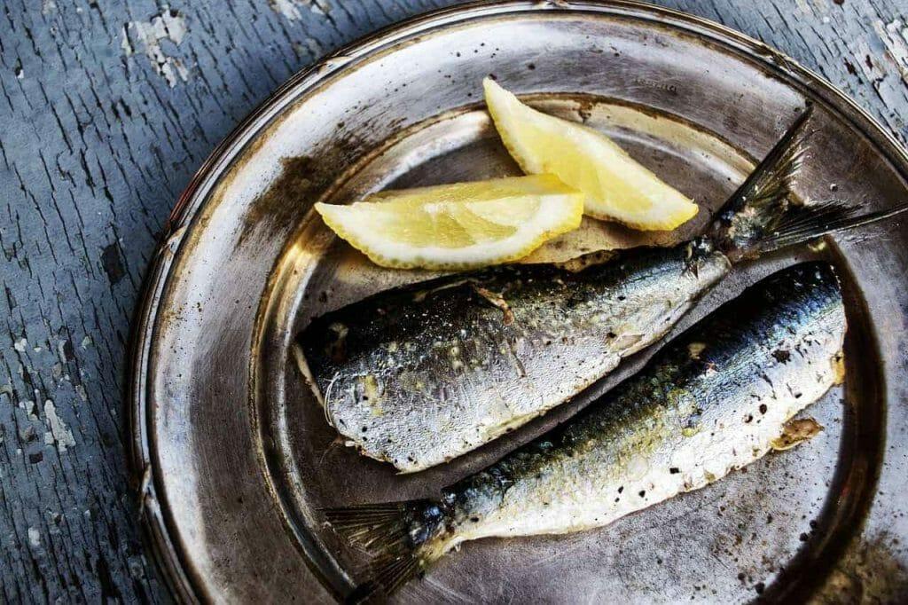 sardines 1489626 1280