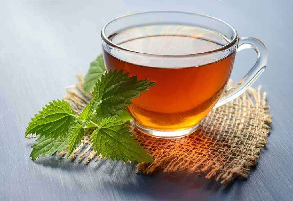 食欲を抑制するためのハーブの煎じ薬のグラス
