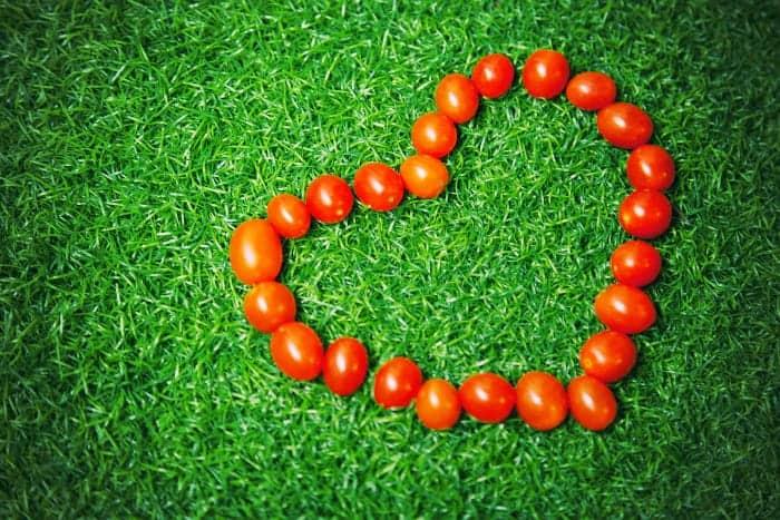 芝生の上にハートに並べられたトマト