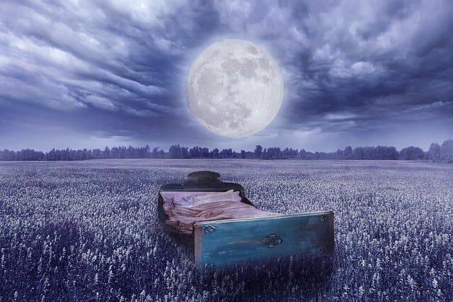 夢の現実-草原のベッド、満月